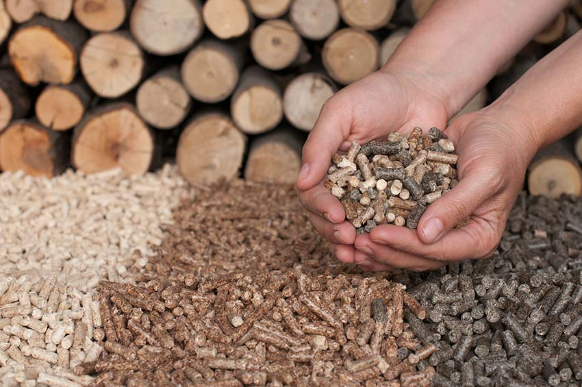 What Are The Differences Between Premium And Economy Wood Pellets?